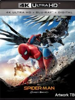 Nonton dan Download Spider-Man: Homecoming (2017) BluRay Subtitle Indonesia Full HD MP4 MKV AVI 480p 720p 1080p TopMovies21 TopMovies31 Ganool LK21 CinemaIndo XXII Youtube